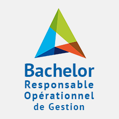 BACHELOR MANAGEMENT en alternance à Limoges